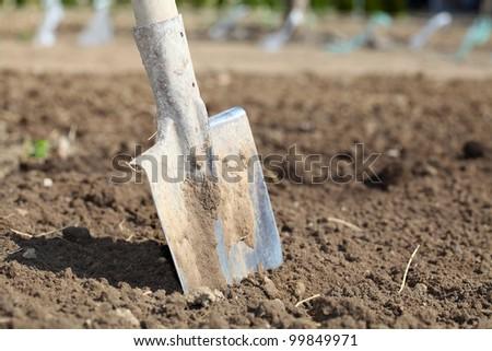 Shovel on field - stock photo