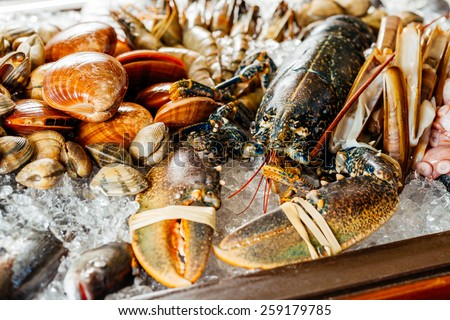 Showcase with ice, lobster, mussels and seafood - stock photo