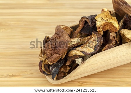 Shown up close serving of wild dried mushrooms - stock photo