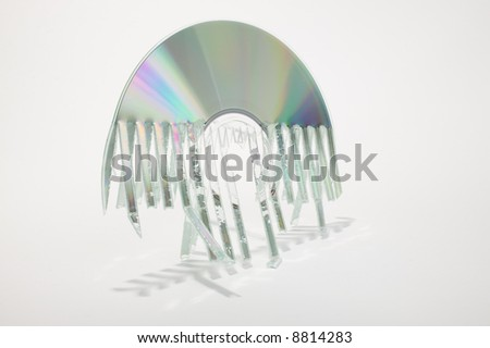 Shredded disc on white. Ideal security metaphor with all the identity theft going on. - stock photo
