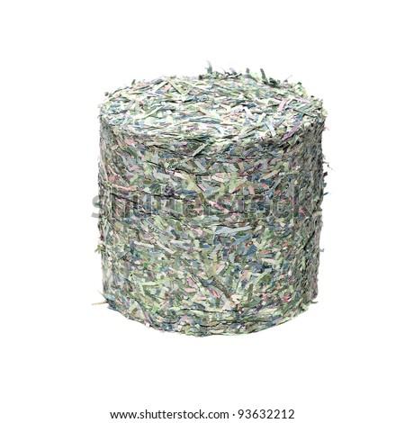 Shredded money - stock photo