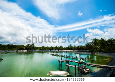 Shrimp farms with blue sky and white clouds