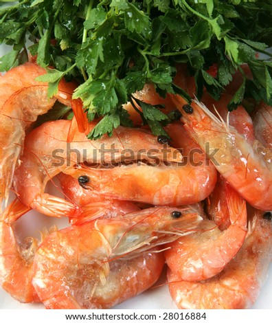 shrimp with herbs - stock photo