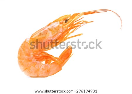 Shrimps - stock photo