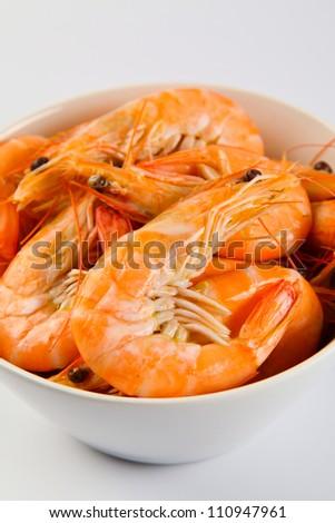shrimps on a white background - stock photo