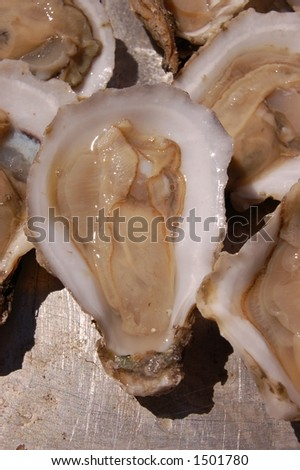 Shucked fresh oyster on a half-shell - stock photo