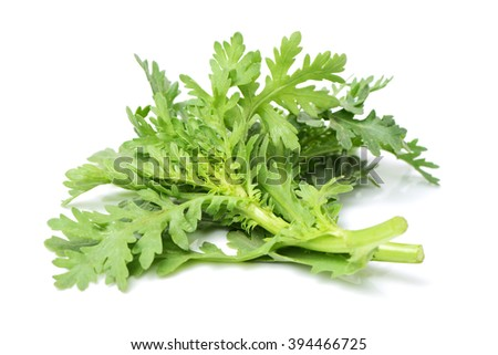 Shungiku, also known as tong hao, or edible chrysanthemum, Isolated on white. A leaf herb commonly used in asian food.  - stock photo