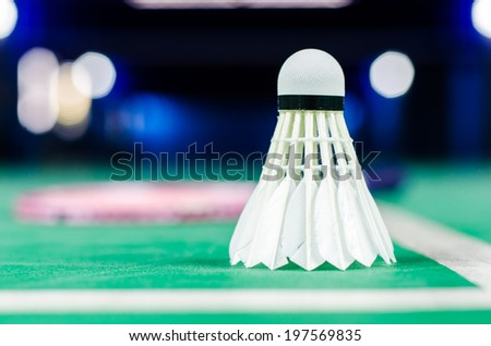 shuttlecocks and badminton racket. - stock photo