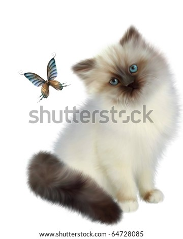 Siamese kitten watching a butterfly on white background - stock photo