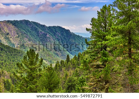 Siberian coniferous taiga in foothills. Eastern Sayan Mountains. Russia