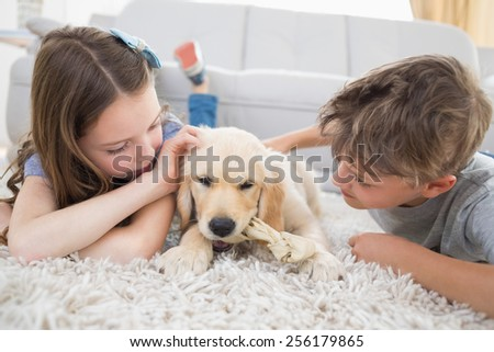Siblings playing with dog while lying on rug at home - stock photo