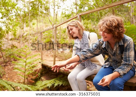 Siblings sitting on a wooden bridge playing in a forest - stock photo