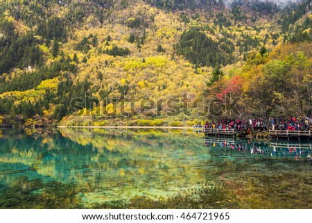 SICHUAN, CHINA - OCTOBER 21: Tourists visit the Five Flower Lake during autumn season in Jiuzhaigou National Park on October 21, 2013 in Sichuan, China.