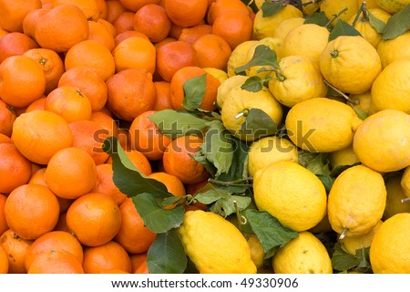 sicilian oranges and lemon, fresh citrus fruits from Sicily, italy, italian fruit market - stock photo