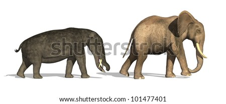 Side by side comparison of a Platybelodon (a prehistoric ancestor of the elephant) and modern day elephant - 3D render - stock photo