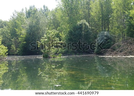 Side chanel of Danube river in Bodíky, Slovakia - stock photo