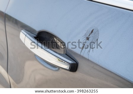 Side door car gray with feces bird sticky - stock photo
