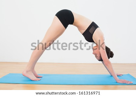Side view of a fit young woman doing the Downward Facing Dog pose on exercise mat - stock photo