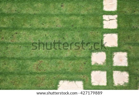 Side view of a nice lawn with accurately mown grass and a path made of square stone tiles