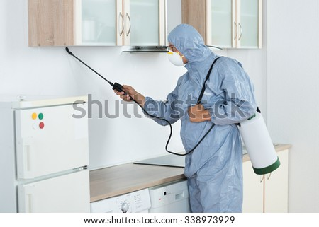Side view of exterminator in workwear spraying pesticide in kitchen. Pest control - stock photo