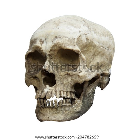 Side view of human skull and clipping path. - stock photo