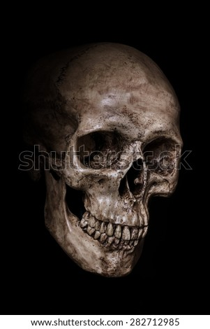 Side view of human skull on isolated black background - stock photo