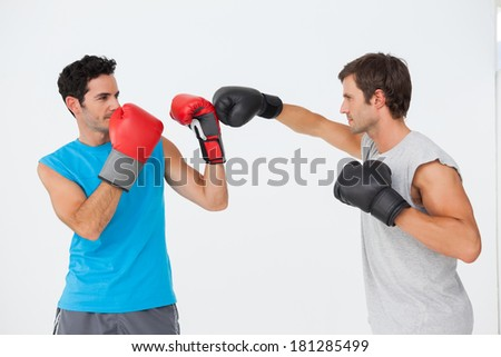 Side view of two male boxers practicing over white background