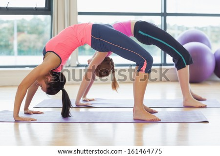 Side view of two toned women bending over backward in bright fitness studio - stock photo
