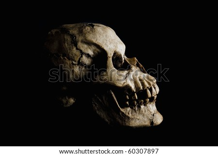 Side view (profile) of ancient human skull in deep shadow. - stock photo