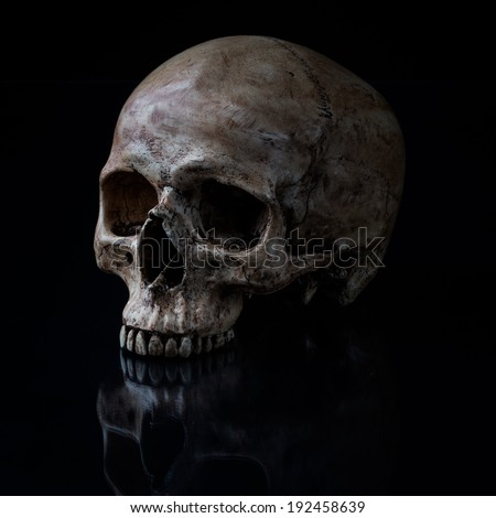 Sideview of human skull open mouth on isolated black background - stock photo