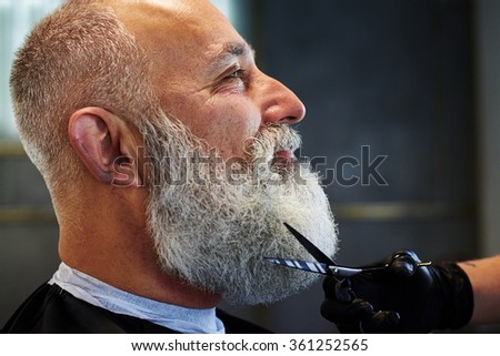 sideview portrait of grey-haired man with long beard in barber shop. barber cutting beard with scissors - stock photo