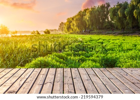 Sidewalk in the park - stock photo