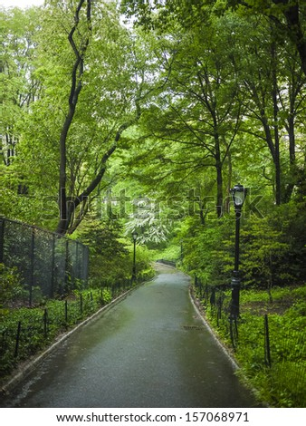 Sidewalks and forests in spring, Central Park, New York City - stock photo