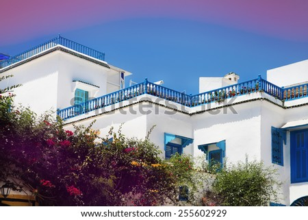 Sidi Bou Said. La Gulett, Tunisia. White and blue town