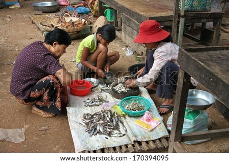 SIEM REAP, CAMBODIA - NOVEMBER 23: Cambodian women sitting as they clean and fillet fish at a local market near Siem Reap, Cambodia on the 23rd November, 2013.
