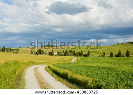 SIENNA, ITALY - JUNE 01, 2016 - panorama of crete near Asciano Sienna with green hills of wheat fields and isolated dirt roads in the countryside Tuscan