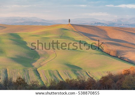 SIENNA, TUSCANY -  DECEMBER 10, 2016 -   rural landscape of Tuscany in the winter between the hills and the cypresses