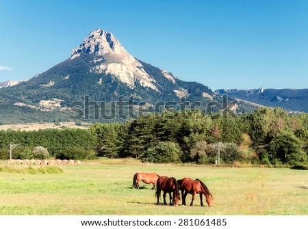 Sierra De Andia, Navarre, Spain - stock photo
