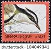 SIERRA LEONE - CIRCA 2002: A stamp printed in sierra Leone shows Crocodile bird, pluvianus aegyptius, circa 2002 - stock