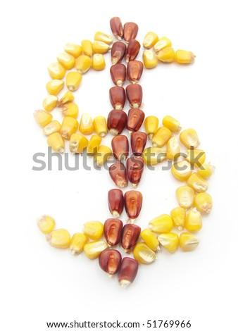 Sign of dollar - stock photo