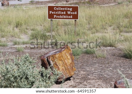 sign stating that petrified wood is not allowed to be collected in the petrified forest - stock photo