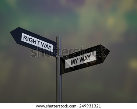 Signpost with my way or right way direction choices - stock photo