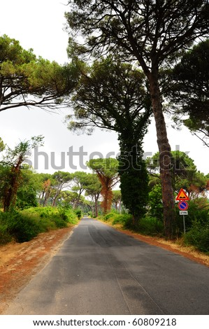 Signs Of Warning About The Dangers On The Forest Road - stock photo