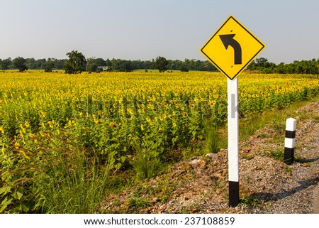 Signs, turn left and sunflower farm in a rural area of Thailand.