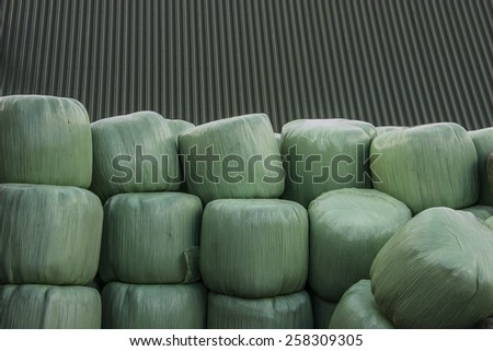 Silage in green bags