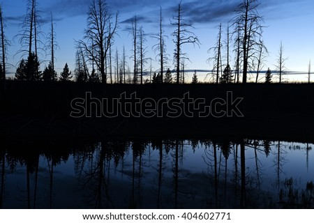 Silhouet reflection in a pond in Yellowstone National Park, after sunset. - stock photo