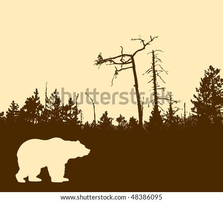 silhouette bear - stock photo