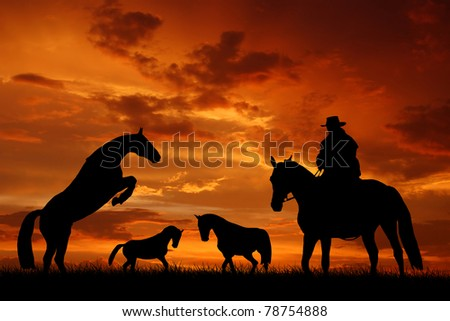 Silhouette cowboy with horses  in the sunset - stock photo