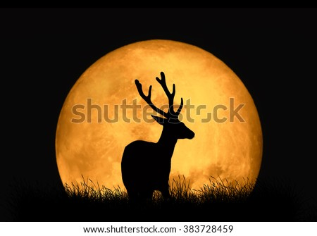 Silhouette deer on the background of red moon. Large moon on a dark background - stock photo