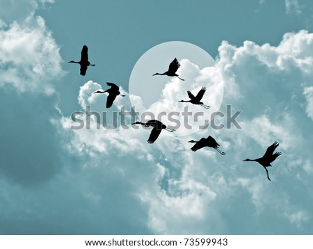 silhouette flying cranes on cloudy background